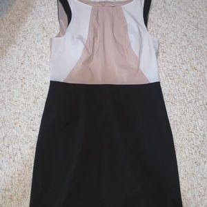 Ann Taylor size 8 petite dress
